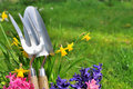 Spring flowers and tools Stock Photos