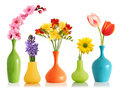 Spring flowers in vases Royalty Free Stock Image