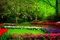 Spring garden in Keukenhof, Holland Royalty Free Stock Photo