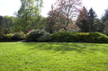 Spring garden lawn nice and trees after rain Stock Photo