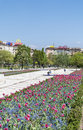 Spring garden with tulips in front of the national palace of culture sofia bulgaria blooming Royalty Free Stock Photography