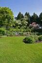 Spring garden view