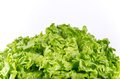Spring green lettuce leaves isolated on a white background Stock Photo