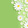 Spring green nature background with white chamomiles Royalty Free Stock Photo