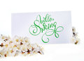 Spring greeting card with white flowers and text Hello Spring. Calligraphy lettering