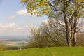Spring in the harz near bad harzburg Royalty Free Stock Photos
