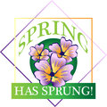 Spring has Sprung! Royalty Free Stock Photo