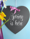 Spring is here greeting on heart shape blackboard or copy space with flowers in pink vase blue background vertical Royalty Free Stock Images