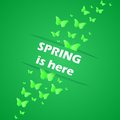 Spring is here this illustration Royalty Free Stock Images