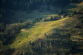 Spring hillsides carpathian mountains ukraine Stock Images