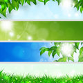 Spring holiday banners abstract green nature with leaves and blurry lights Stock Photos