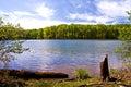 Spring at the Lake Royalty Free Stock Photo