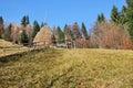 Spring landscape beautifull winter scene in romanian carpathians bran Royalty Free Stock Images