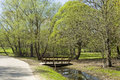 Spring landscape with bridge trees first little green leaves in park and little wooden recorded in izmaylovskiy park in moscow Royalty Free Stock Images
