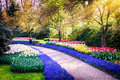 Spring Landscape With Colorful...