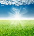 Spring landscape, green grass under the rays of the rising sun Royalty Free Stock Photo