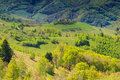 Spring landscape panorama hills and meadow holbav transylvania romania sunny day fields in Royalty Free Stock Photo