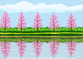 Spring landscape pattern of with reflections of blooming trees in calm water Stock Photo