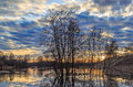 Spring landscape, submerged trees and beach Royalty Free Stock Photo