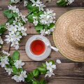 Spring layout with branches of a flowering apple tree, a cup of tea and a straw hat Royalty Free Stock Photo