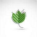 Spring maple tree leaf, botany and eco flat image. Vector illust