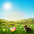 Spring meadow with rabbit and easter eggs Royalty Free Stock Photos