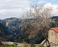 Spring at Meteora Stock Images