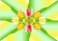 Spring motif as starfish stylized tulips of different colors and leaves on the intersecting vane background Royalty Free Stock Photography