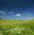 Spring mountain landscape in Turkey Stock Images