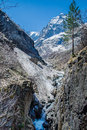 Spring in the mountains caucasus dombay elbrus is coming Royalty Free Stock Photos
