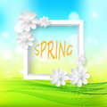Spring natural Sunny background with white frame and white delicate paper flowers.