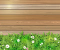 Spring nature background. Green grass and leaf plant, White Gerbera, Daisy flowers and sunlight over wood fence Royalty Free Stock Photo