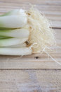 Spring onion on a wooden table Royalty Free Stock Photography