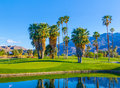 Spring at Palm Springs Golf course with pond,California Royalty Free Stock Photo