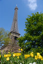 Spring in Paris, eiffel tower Stock Photos