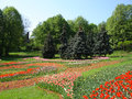 Spring park in springtime in ukraine kiev Royalty Free Stock Photos