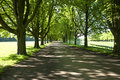 Spring path Royalty Free Stock Images
