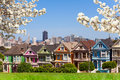 Spring photo of Painted ladies and San Francisco s Royalty Free Stock Photo