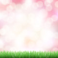 Spring pink bokeh background with green grass Stock Photography