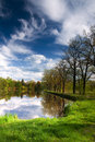 Spring pond view Royalty Free Stock Image