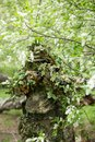Camouflaged sniper in the forest