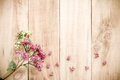 Spring Purple flowers on old wooden background Royalty Free Stock Photo