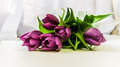 Spring purple tulips bouquet background Royalty Free Stock Photography