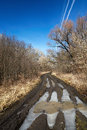 Spring road in russia forest Royalty Free Stock Images