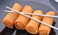 Spring rolls on a plate Royalty Free Stock Photo