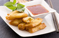 Spring Rolls with Sauce Royalty Free Stock Photos