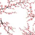 Spring sakura flowers. EPS 10