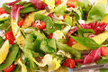 Spring salad colorful with avocado lettuce tomatoes and goat cheese Stock Photos