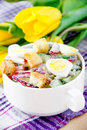 Spring salad radishes cucumbers eggs crouton white plate Stock Images