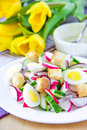 Spring salad radishes cucumbers eggs crouton white plate Stock Photo